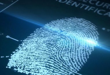 Fingerprint Identification