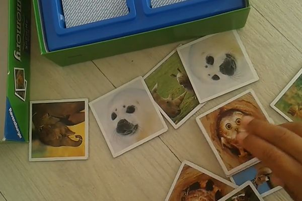 Memory Animal Ravensburger0