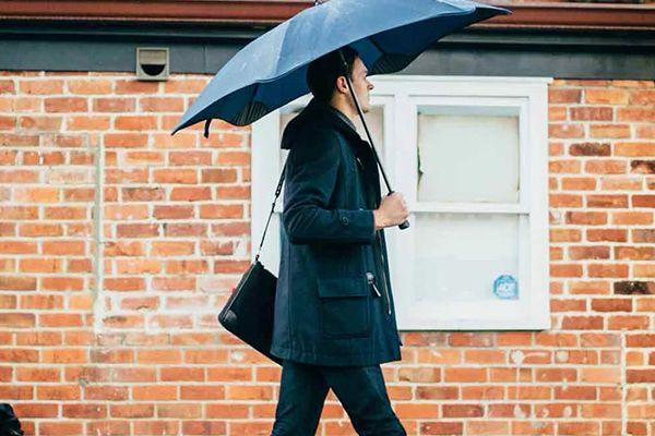 Parapluie Housse Blunt Pochette Housse Classic XL Protection Poignée pour parapluie