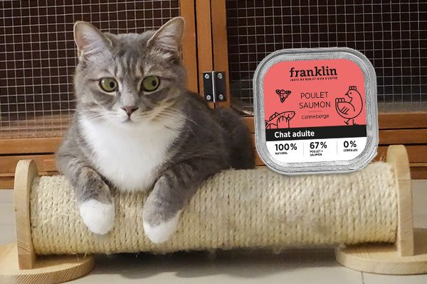 Franklin Pet Food