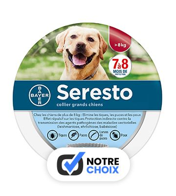 Bayer Seresto Collier Chien