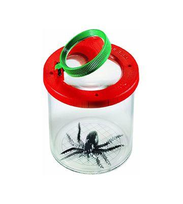 La boîte loupe à insecte de chez Dam SPRL