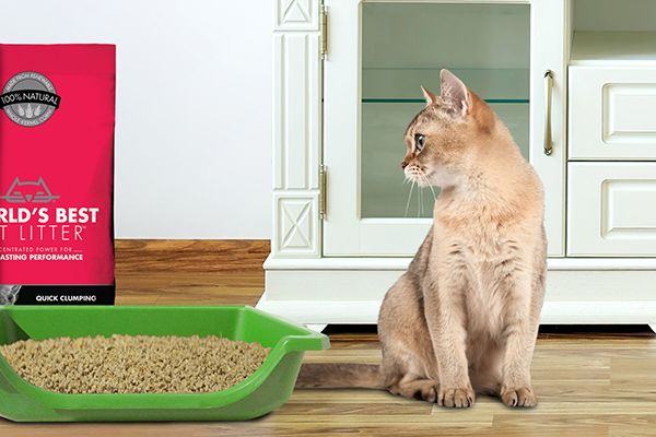World's Best Multiple Cats Clumping Formula