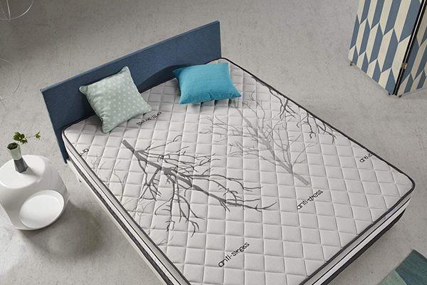 COSMOS bedding Solar