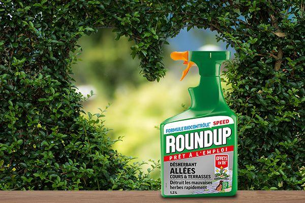 Roundup en pulverisateur