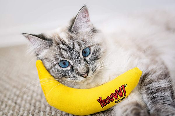 Yeowww Catnip Toy Yellow Banana