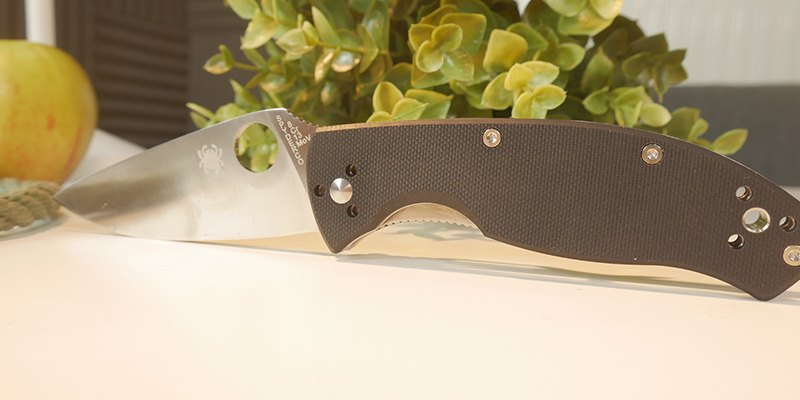 Spyderco Tenacious C122gp