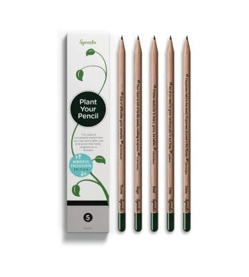 Les crayons à planter de Sprout